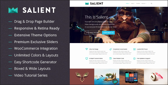 salient-wordpress